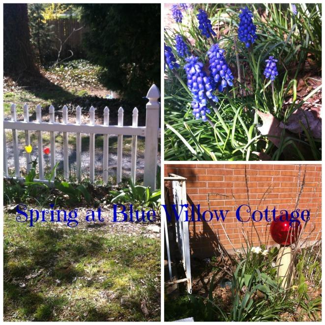 spring at bwc