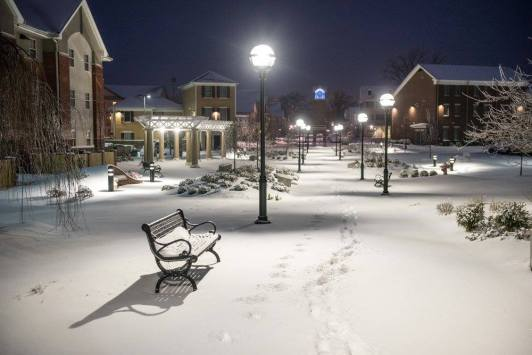 Harding with snow