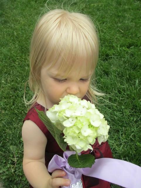 lulu flower
